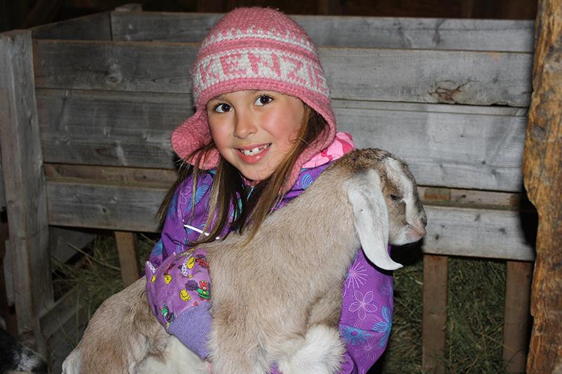 Sch-visit-goat