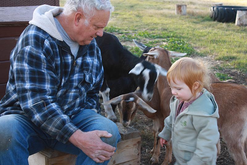 Sch-visit-goats