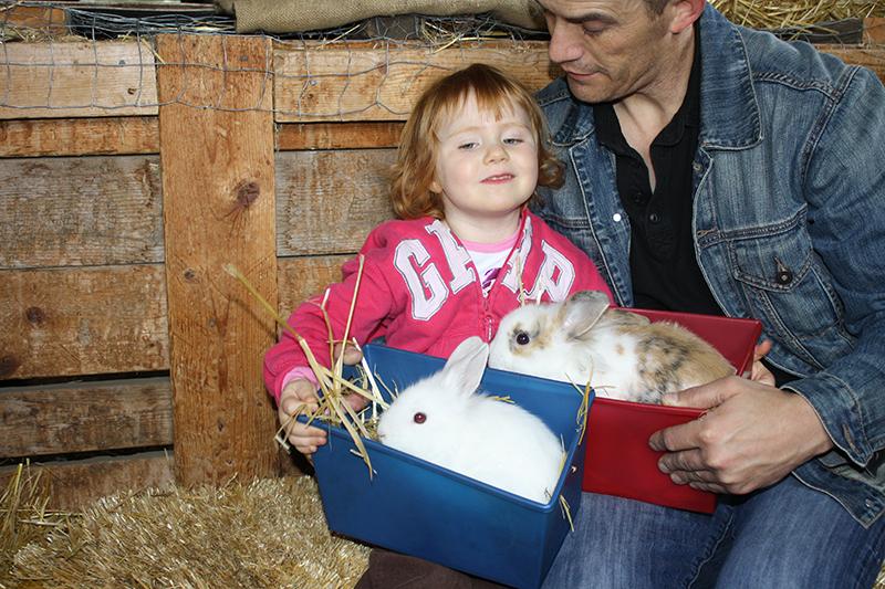 Sch-visit-rabbits